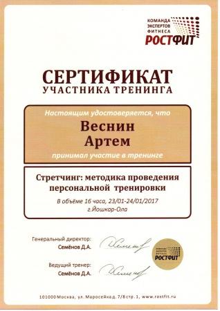 Артем Веснин