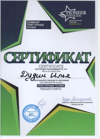 Илья Дудин